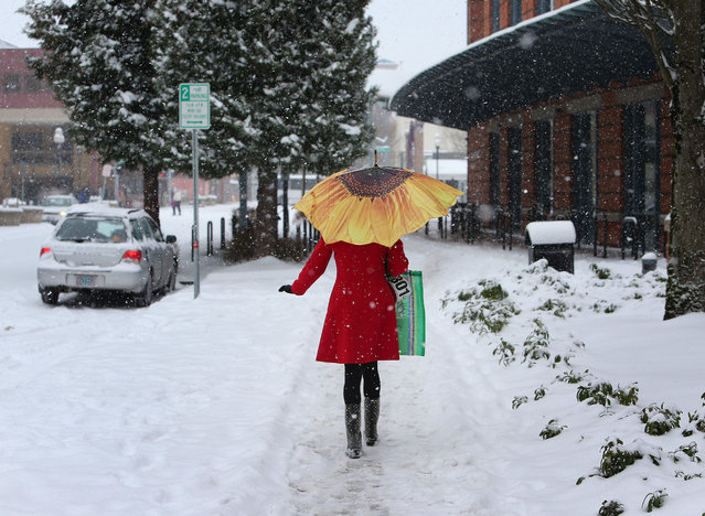 A brightly-dressed Stephanie Gibbs breaks up the monochrome of a snowy afternoon as she makes her way down 10th Ave. in downtown Eugene, Ore. on Friday, February 7, 2014, on her way to the Eugene Public Library. Snowfall starting late in the morning Friday will be widespread, dropping a foot or more in mountainous parts of Southern Oregon and 2 to 8 inches in Western Oregon valleys that got slammed Thursday, the National Weather Service said. (Photo by Brian Davies/AP Photo/The Register-Guard)