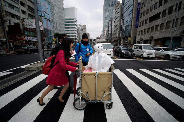 Tomomi Ota pushes a trolley loaded with her humanoid robot Pepper as she crosses a street in Omotesando shopping district in Tokyo, Japan, 24 March 2016. Telecommunications and mobile phone carrier SoftBank Corp. opened a robot-staffed store where 10 Pepper humanoid robots welcome customers looking to buy a mobile phone. The store will be opened until 30 March 2016. (Photo by Franck Robichon/EPA)