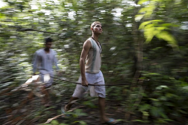 Kambeba Indian, Dream Braga (R), 18, and his friend Nelson Varge da Silva, walk in a jungle near the village Tres Unidos, Amazon state May 9, 2015. (Photo by Bruno Kelly/Reuters)