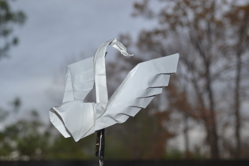 Origami by Hoang Tien Quyet
