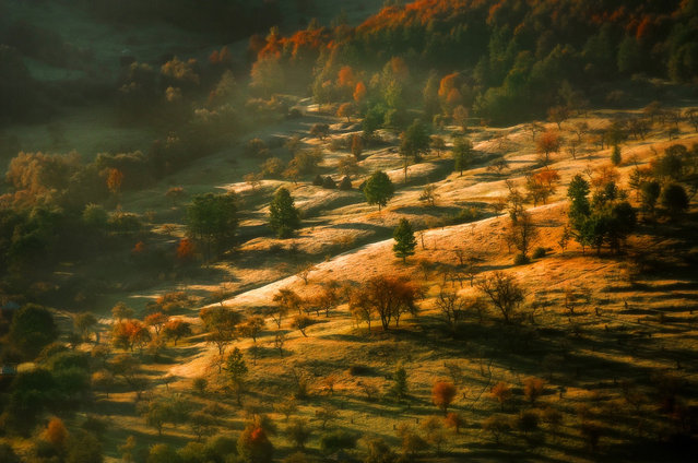 The Beautiful Landscapes By Alex Robciuc