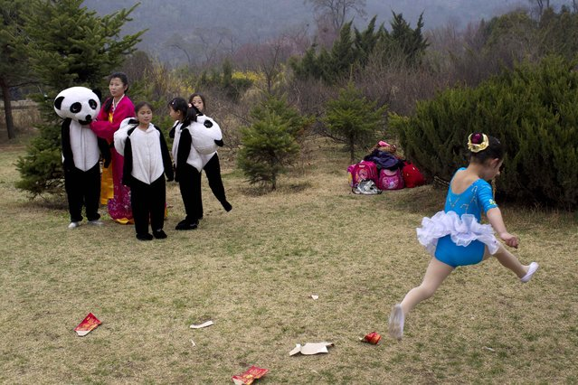 A young North Korean dancer leaps by as North Korean girls put on panda bear costumes as they prepare to perform at a gathering at a park to celebrate the 99th anniversary of the late leader Kim Il Sung's birthday in Pyongyang Friday, April 15, 2011. (Photo by David Guttenfelder/AP Photo)