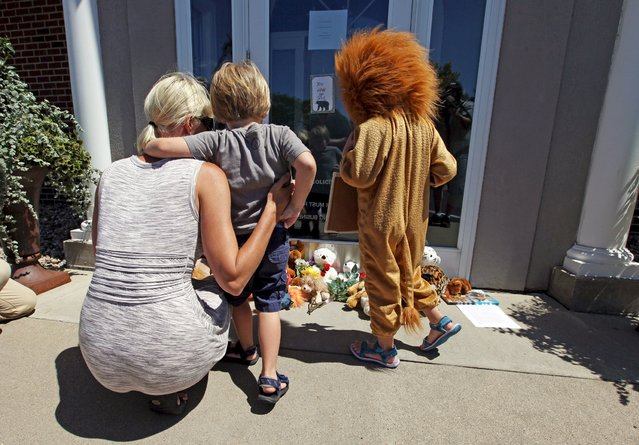 Sarah Madison (L) holds her son Beckett, 3, as her daughter Quinn, 5 (in costume), look at stuffed animals at the doorway of River Bluff Dental clinic in protest against the killing of a famous lion in Zimbabwe, in Bloomington, Minnesota July 29, 2015. (Photo by Eric Miller/Reuters)