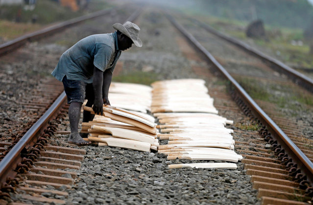 A man places softball cricket bats along the middle of two train tracks to dry after painting them in Panadura, Sri Lanka June 29, 2016. (Photo by Dinuka Liyanawatte/Reuters)