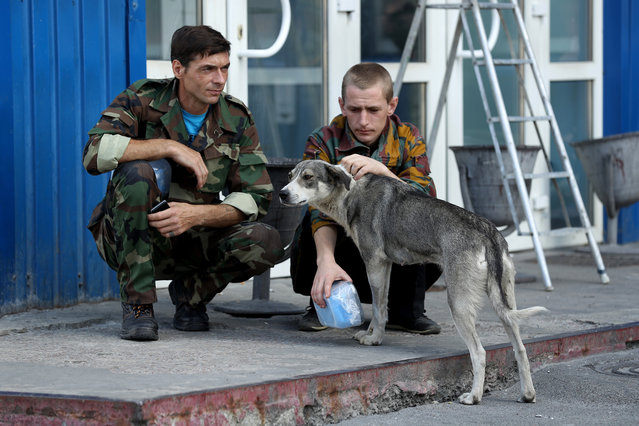 Workers on a break pet a stray dog they have named Bulka outside an administrative building inside the exclusion zone at the Chernobyl nuclear power plant on August 18, 2017 near Chornobyl, Ukraine. (Photo by Sean Gallup/Getty Images)
