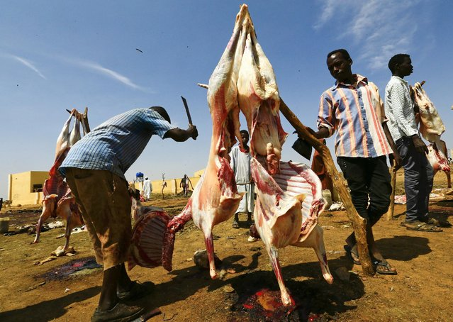 Butchers cut sheep in Abu Shock IDPs camp in Al Fashir, capital of North Darfur, Sudan, September 6, 2016. (Photo by Mohamed Nureldin Abdallah/Reuters)