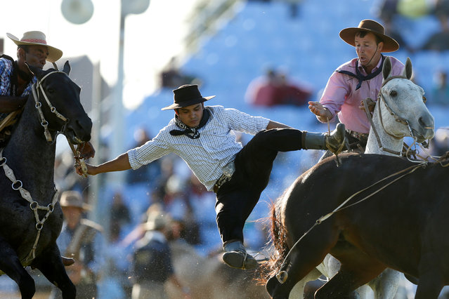 A gaucho is unseated by an untamed horse as others try to help him during the Creole week celebrations in Montevideo, Uruguay on March 26, 2018. (Photo by Andres Stapff/Reuters)