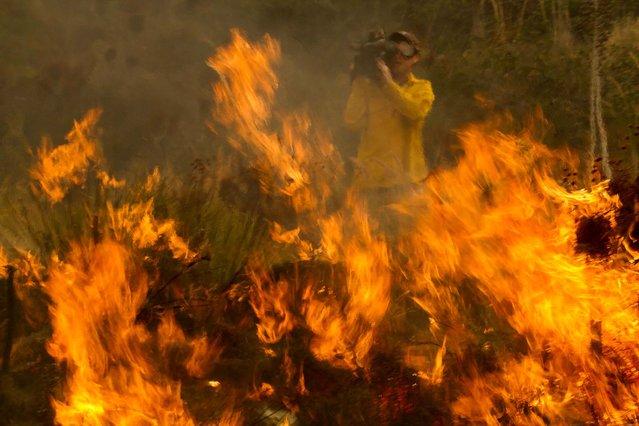 A cameraman records the wildfire burning along the Pacific Coast Highway near Ventura. (Photo by Ringo H.W. Chiu/Associated Press)