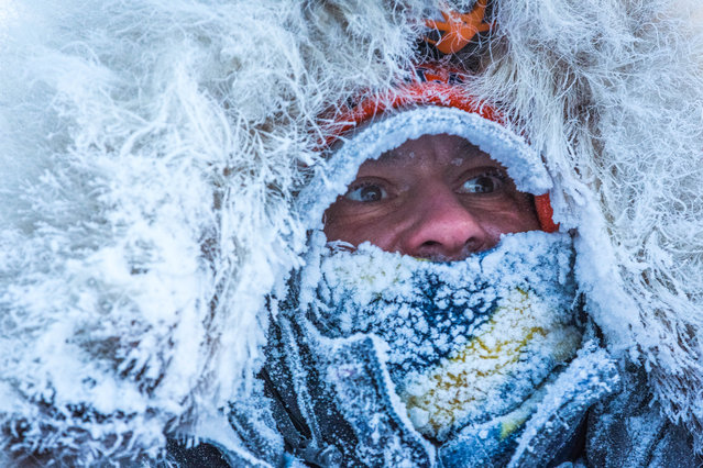 Tok musher Hugh Neff arrives in Kaltag, Alaska, during the Iditarod Trail Sled Dog Race, Sunday, March 15, 2015. (Photo by Loren Holmes/AP Photo/Alaska Dispatch News)