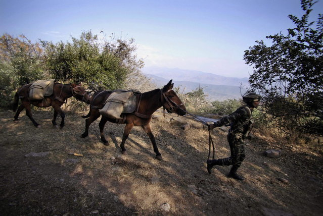 In this Monday, December 23, 2013 photo, and Indian army soldier walks with ponies carrying food supply for one of the forward posts near the Line of Control (LOC), that divides Kashmir between India and Pakistan, at Krishna Ghati (KG Sector) in Poonch, 290 kilometers (180 miles) from Jammu, India. (Photo by Channi Anand/AP Photo)