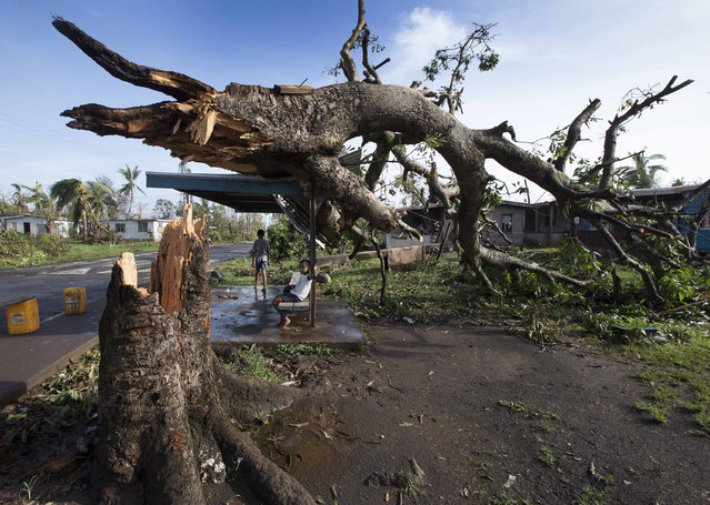 Two boys are under a bus shelter that is supporting a fallen tree in the village of Talecake, Fiji, Wednesday, February 24, 2016, after cyclone Winston ripped through the island nation. The cyclone tore through Fiji over the weekend with winds that reached 177 miles (285 kilometers) per hour, making it the strongest storm in Fiji's recorded history. (Photo by Brett Phibbs/New Zealand Herald via AP Photo)