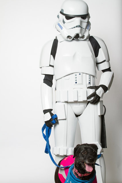 A Storm Trooper with a dog. (Photo by Rohit Saxena/Caters News)