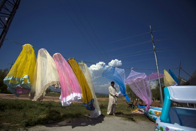A Pakistani vendor arranges mosquito nets on display for sale at a roadside stall in Islamabad, Pakistan, Friday, May 1, 2015. (Photo by B. K. Bangash/AP Photo)