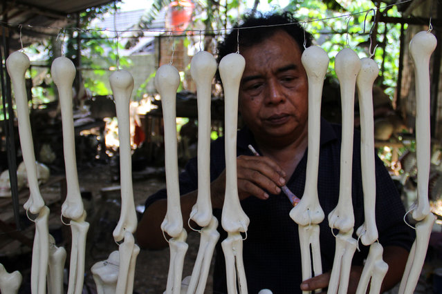 A craftsman works on making props bones of the human body on April 23, 2014 in Depok, West Java, Indonesia. The mannequins are made from fiberglass and will be used in schools, hospitals and laboratories. (Photo by Nurcholis Anhari Lubis/Getty Images)