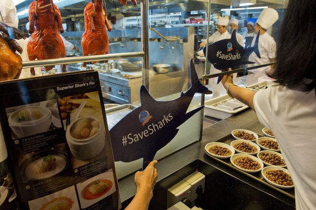 Greenpeace volunteers and Indonesian marine activists stage a campaign at a popular Chinese restaurant as they demonstrate against the consumption of shark's fin in Jakarta on July 12, 2015. (Photo by Romeo Gacad/AFP Photo)