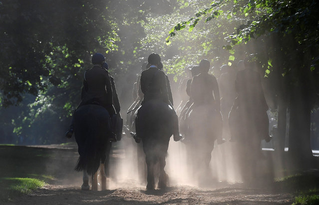 Members of the Household Cavalry Mounted Regiment ride out during the early morning in Hyde Park in central London, Britain May 26, 2017. (Photo by Toby Melville/Reuters)