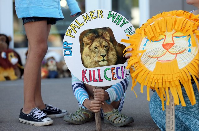 Piper Hoppe, 10, from Minnetonka, Minnesota, holds a sign at the doorway of River Bluff Dental clinic in protest against the killing of a famous lion in Zimbabwe, in Bloomington, Minnesota July 29, 2015. (Photo by Eric Miller/Reuters)