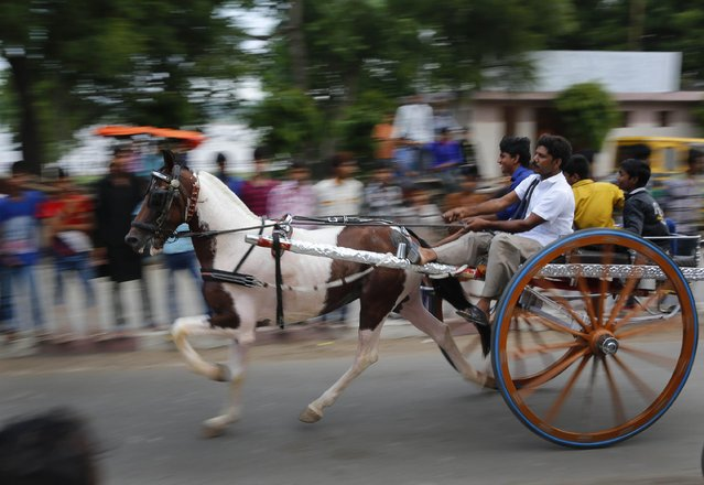 "Participants race their ""Ikka"", or a horse driven cart at an event in Allahabad, India , Monday, August 3, 2015. (Photo by Rajesh Kumar Singh/AP Photo)"