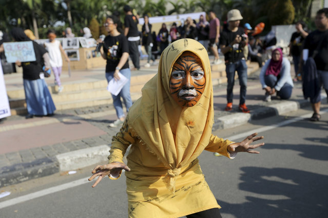 A Muslim activist with face painted to resemble a tiger, takes part in a rally against Sumatran tiger trade that marks the International Tiger Day, in Jakarta, Indonesia, Sunday, July 30, 2017. Sumatran tiger is the world's most critically endangered tiger subspecies with fewer than 400 remain in the wild and may become extinct in the next decade due to poaching and habitat loss. (Photo by Tatan Syuflana/AP Photo)