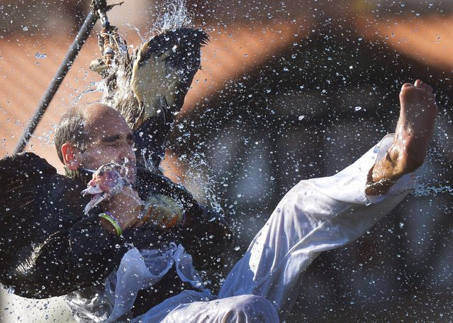 A man attempts to pull the neck off a dead goose while being repeatedly being plunged into the water during Antzar Eguna (Day Of The Goose) in the Basque fishing town of Lekeitio, near Bilbao, northern Spain, September 6, 2015. (Photo by Vincent West/Reuters)