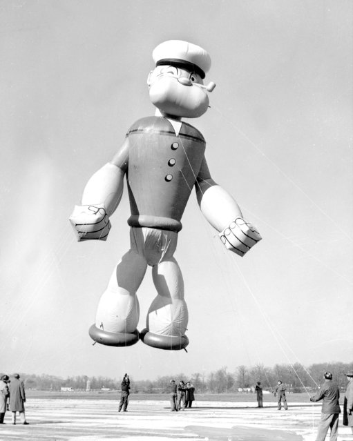 Popeye, the sailor, flexes his muscles as he gets ready to parade in Macy's Thanksgiving Day parade, 1957. Popeye stands 56 feet tall, 32 feet wide and he's filled with 6,000 cubic feet of helium. Thirteen bands will provide music for march. (Photo by NY Daily News Archive via Getty Images)