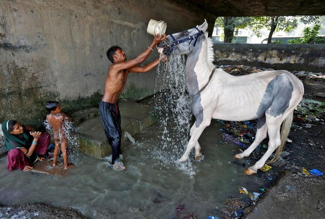 A man washes his horse as a woman bathes her son at concrete water pens under a flyover in a slum area in Kolkata, India October 21, 2016. (Photo by Rupak De Chowdhuri/Reuters)