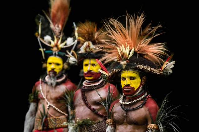 These powerful images capture the spear-wielding tribes of Papua new Guinea who believe they are possessed with the spirit of the crocodile. They show how the Kangunaman clansmen scar their backs to resemble reptile scales while the Huli Wigmen wear elaborate headdresses to signal they are ready for battle. The Kunai men – armed with spears, bows and axes – are pictured with striking red, black and yellow paint on their faces. Northern Irish photographer Trevor Cole took the stunning images during a gathering of tribes known as a Sing-Sing. Here, the clans come together to show off their own cultures, dances and music. (Photo by Trevor Cole/Media Drum World)