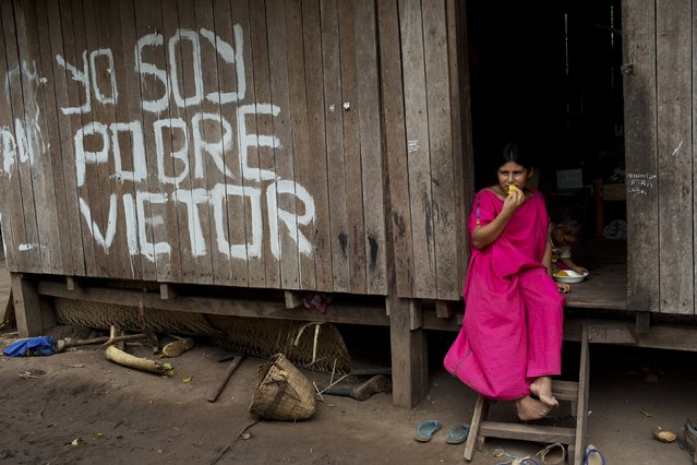 "In this November 19, 2015 photo, Eunice Santonino snacks on mango as she sits in the front doorway of her home in Potsoteni, an Ashaninka indigenous community in Peru's Junin region. After so many years of hearing her father repeat: ""Yo soy pobre Victor"" or ""I'm poor Victor"", Eunice decided to paint the phrase on the facade of their home. (Photo by Rodrigo Abd/AP Photo)"