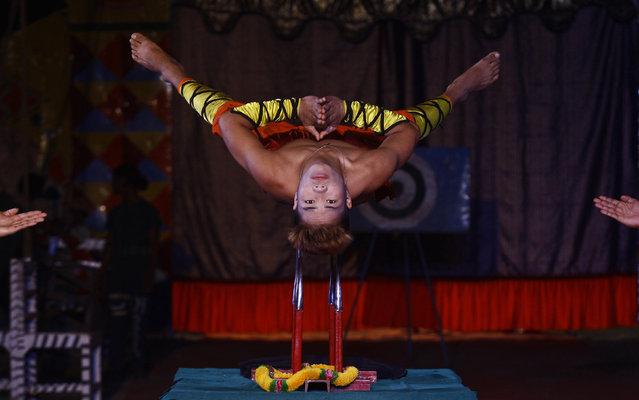 A performer balances himself on a set of knives during a special preview as part of Christmas celebrations at the Ajanta circus in Kolkata, India, December 17, 2015. (Photo by Rupak De Chowdhuri/Reuters)