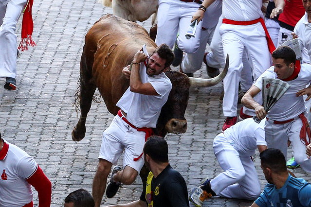 "A ""Mozo"" or runner is dragged by a bull during the traditional San Fermin bull run as they arrive at the bullring in Pamplona, Spain, 14 July 2018. The 400-year-old annual festival, held from 06 to 14 July every year, honors the city's patron saint, San Fermin, and attracts thousands of tourists for a nine-day party punctuated by the daily running of bulls through city streets and bullfights. (Photo by Rodrigo Jimenez/EPA/EFE)"