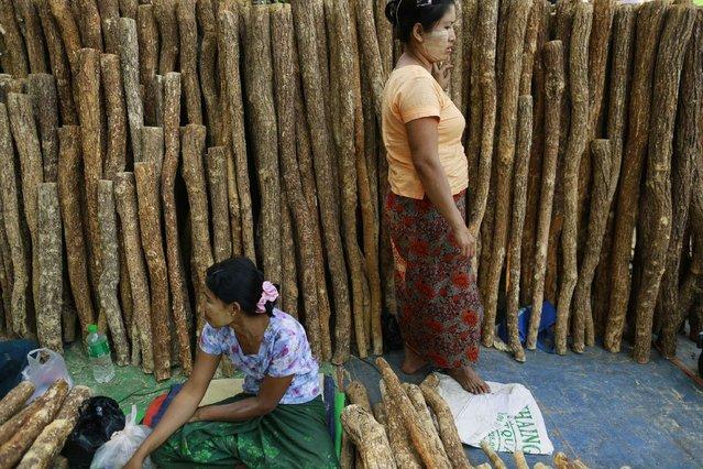 Women sell Thanakha wood at the Kyaik-Khauk pagoda festival in Tanlyin township, outside Yangon, February 2, 2015. (Photo by Soe Zeya Tun/Reuters)