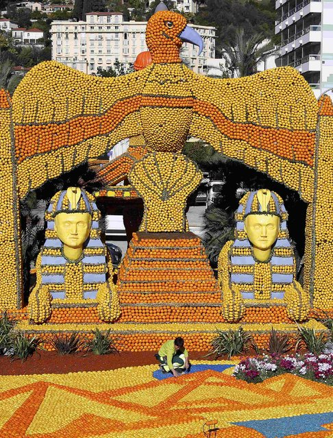 "A worker puts the final touch to a replica of a giant eagle and pharaons made with lemons and oranges which shows a scene of the movie ""Cleopatra"" during the Lemon festival in Menton, southern France, February 10, 2016. (Photo by Eric Gaillard/Reuters)"