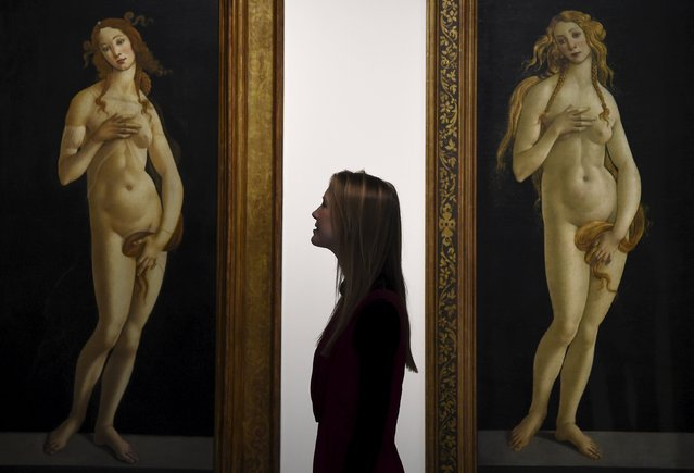 """A museum employee views two paintings entitled """"Venus"""" by Sandro Botticelli at the Victoria and Albert museum in London, Britain, March 2, 2016. (Photo by Toby Melville/Reuters)"""