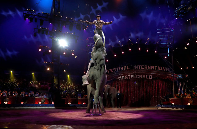 Erwin Frankello, winner of a Silver Clown award, performs during the gala of the 41st Monte-Carlo International Circus Festival in Monaco January 24, 2017. (Photo by Eric Gaillard/Reuters)