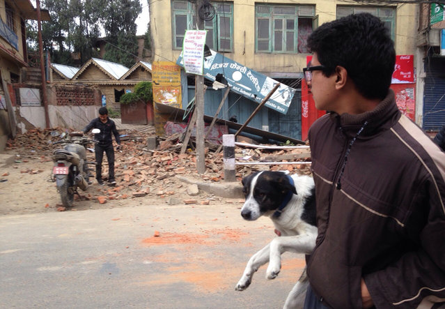 A man carries a dog and walks past damage caused by an earthquake in Kathmandu, Nepal, Saturday, April 25, 2015. A strong magnitude-7.9 earthquake shook Nepal's capital and the densely populated Kathmandu Valley before noon Saturday, causing extensive damage with toppled walls and collapsed buildings, officials said. (Photo by Niranjan Shrestha/AP Photo)
