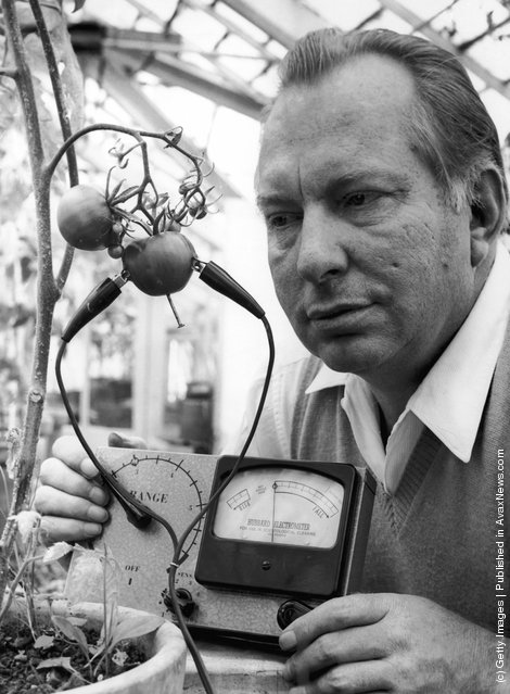 American science fiction writer L. Ron Hubbard, founder of the Church of Scientology, uses his Hubbard Electrometer