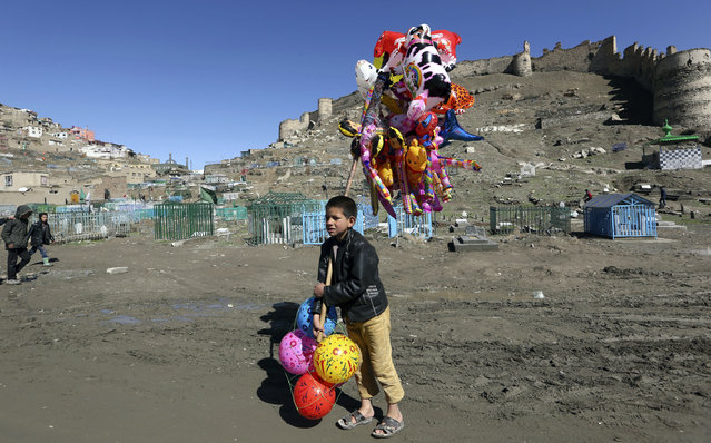 A young boy sells balloons in Kabul, Afghanistan, Thursday, March 23, 2017. An aid group said Thursday that nearly a third of all children in war-torn Afghanistan are unable to attend school, leaving them at increased risk of child labor, recruitment by armed groups, early marriage and other forms of exploitation. Save the Children said more than 400,000 Afghan children, over 1,100 per day – are expected to drop out of school this year due to growing instability and the forcible return of Afghan refugees from Pakistan, adding to the 3.7 million already out of school. (Photo by Rahmat Gul/AP Photo)