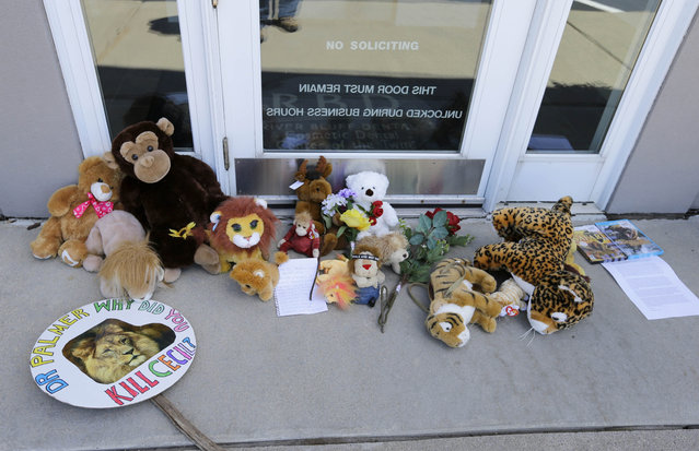 Stuffed animals and notes lie outside Dr. Walter James Palmer's dental office in Bloomington, Minn., Wednesday, July 29, 2015. (Photo by Ann Heisenfelt/AP Photo)