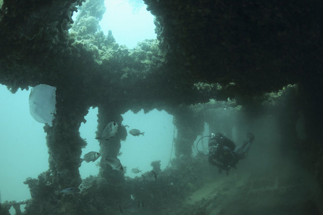 A diver swims inside the wreck of the Baron Gautsch ship, near the Adriatic town of Rovinj June 22, 2014. The 100th anniversary of the sinking of the Baron Gautsch, an Austro-Hungarian steamboat which sank in the northern Croatian Adriatic sea, will be marked on August 13, 2014. (Photo by Antonio Bronic/Reuters)