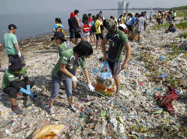 Students, environmental activists and volunteers collect garbage in an effort to clean up the coast of the Paranaque coastal Habitat and Ecotourism area, home to a mangrove forest and a bird sanctuary, as part of the advanced commemoration of Earth Day in Manila April 20, 2013. Earth Day is an annual event celebrated on April 22, which aims to promote public awareness and protection of the environment. (Photo by Romeo Ranoco/Reuters)