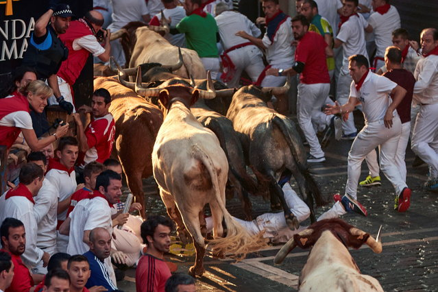 """Mozos"" or runners try to avoid the bulls during the traditional San Fermin bull run as they arrive at the bullring in Pamplona, Spain, 14 July 2018. (Photo by Rodrigo Jimenez/EPA/EFE)"