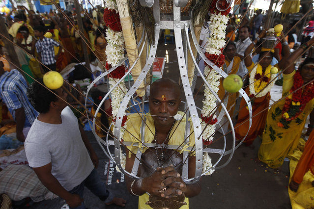 A Hindu devotee, his body pierced with metal rods, participates in a religious procession during Thaipusam festival in Chennai, India, Tuesday, February 3, 2015. (Photo by Arun Sankar K./AP Photo)