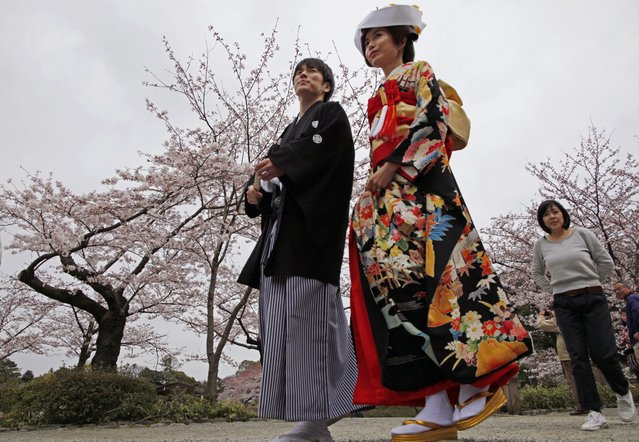 A couple walks together at Sankeien Park in Yokohama, south of Tokyo, to have their wedding pictures taken as cherry blossoms are in full bloom Sunday, March 29, 2015. (Photo by Shuji Kajiyama/AP Photo)