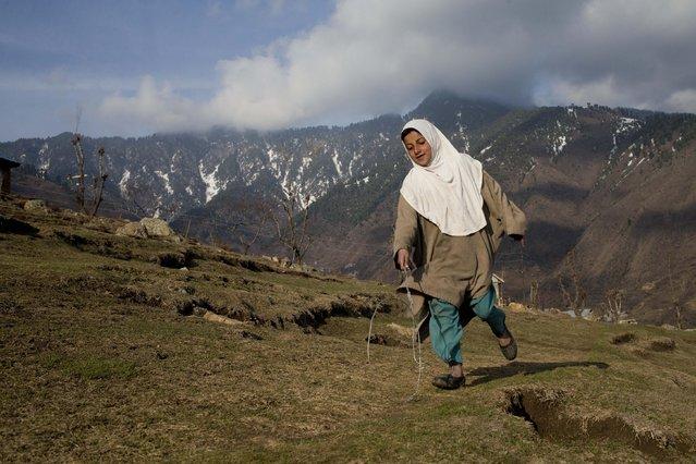 A Kashmiri shepherd girl plays on a hillock in Astanpora, some 25 Kilometers from Srinagar, Indian controlled Kashmir, Wednesday, March 25, 2015. (Photo by Dar Yasin/AP Photo)