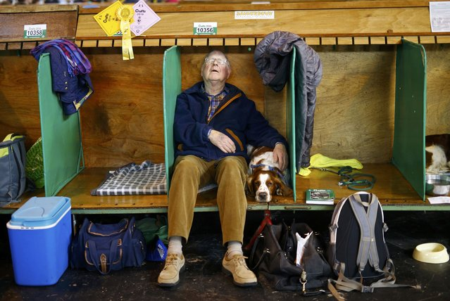 A man sleeps besides his Welsh Springer Spaniel during the second day of the Crufts Dog Show in Birmingham, Britain March 11, 2016. (Photo by Darren Staples/Reuters)