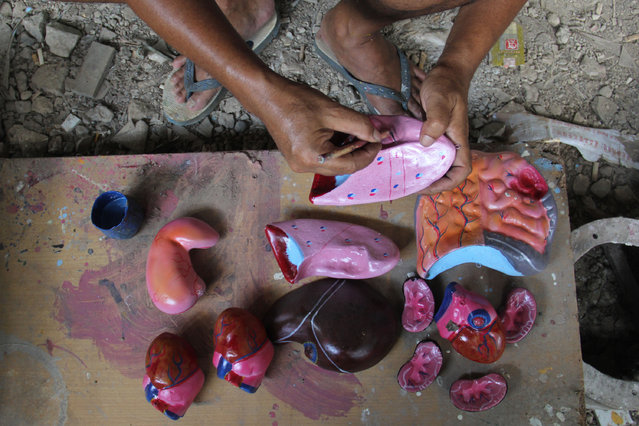 A craftsman paintis props human organs on April 23, 2014 in Depok, West Java, Indonesia. The mannequins are made from fiberglass and will be used in schools, hospitals and laboratories. (Photo by Nurcholis Anhari Lubis/Getty Images)