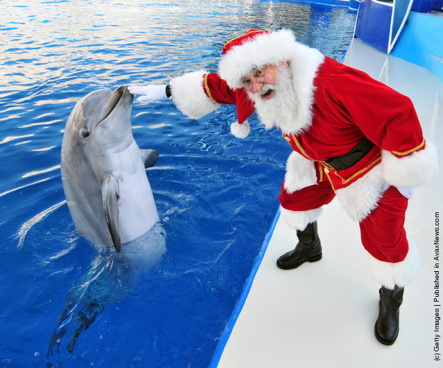 Santa Claus poses with Dolly Dolphin at SeaWorld San Diego
