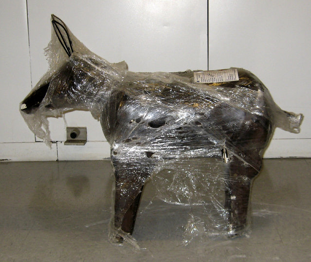 One of 200 cement yard statues shaped like a donkey is shown on display in this handout image provided by the U.S. Immigration and Customs Enforcement agency and released to Reuters February 4, 2009. Law enforcement agents seized 1800 pounds of marijuana valued at $1.5 million that had been hidden in the 200 statues in the cities of Fontana, California and Sun Valley, California. (Photo by Reuters/U.S. Immigration and Customs Enforcement)
