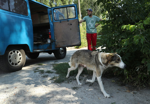 Dog catcher Aleksander Klimov releases a stray dog back into the wild inside the exclusion zone around the Chernobyl nuclear power plant after veterinarians with The Dogs of Chernobyl initiative had tagged, spayed and vaccinated it on August 17, 2017 in Chornobyl, Ukraine. (Photo by Sean Gallup/Getty Images)