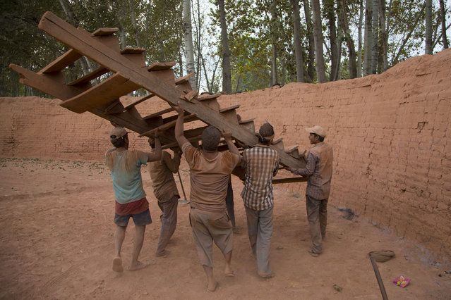 Indian laborers carry a ladder as they work at a brick kiln in Budgham area, southwest of Srinagar, Indian controlled Kashmir, Tuesday, September 8, 2015. Brick making is an unorganized industry, generally confined to rural and semi-urban areas and is one of the largest employment-generating industries in India. The laborers usually work in hard conditions for 12-14 hours a day to reach a target of 1,000 to 1,200 bricks a day, earning between US$ 100 to 140 a month. (Photo by Dar Yasin/AP Photo)
